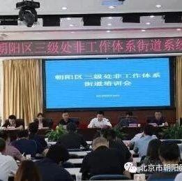 地毯式排查非法集资风险!北京朝阳区开展专项整治和清退工作