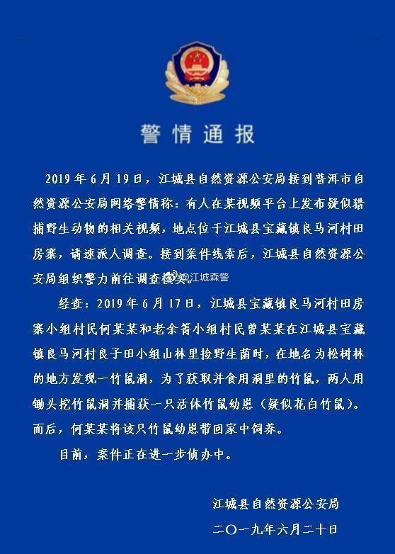 云南江城一男子猎捕疑似国家三有动物花白竹鼠欲食用,被警方调查