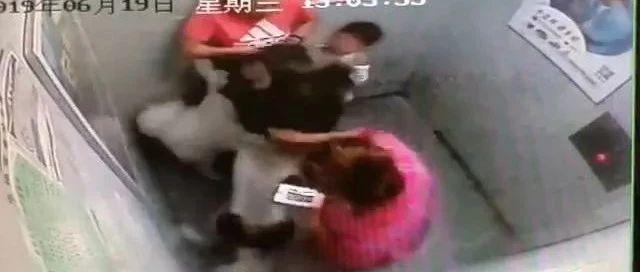 又现电梯内大型犬伤人事件,帮女郎呼吁文明养犬!