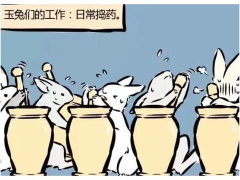 非人哉:月饼黑暗料理层出不穷,玉兔苦不堪言,兔生如此艰难,实