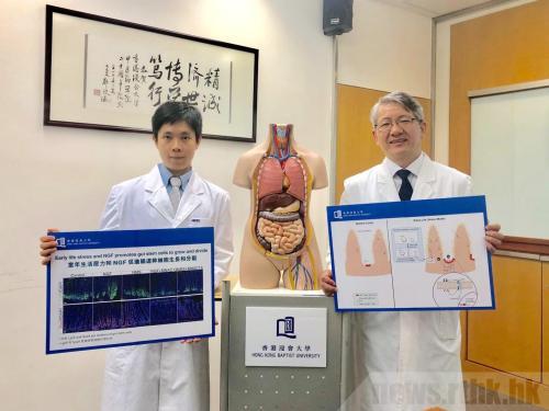 香港浸会大学研究:幼年生活压力或引发肠易激综合症