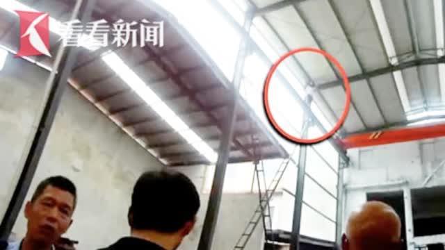 视频:工厂跳闸停电 女子不愿停工爬上车间行车闹轻生