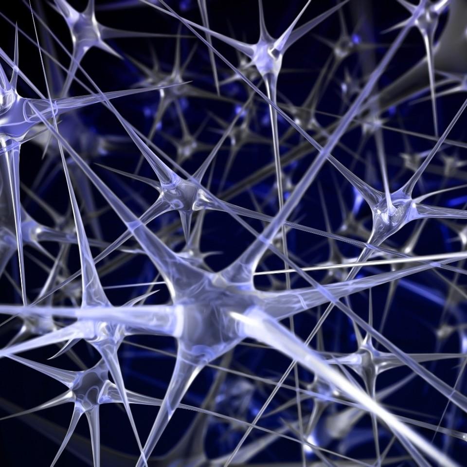 上海交大张拳石:神经网络的可解释性,从经验主义到数学建模