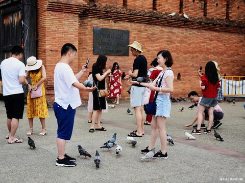 在泰国清迈喂鸽子,受中国游客热捧,当地人:中国客人钱好赚