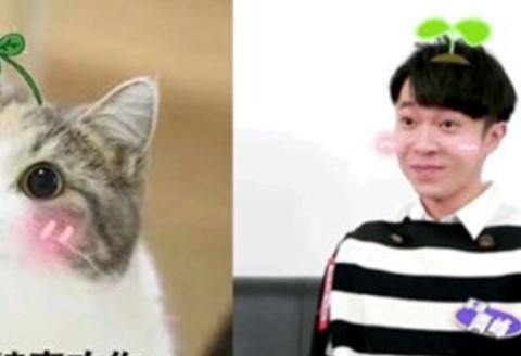 吴青峰表情包萌翻网友,人到中年的他,依旧保持赤子之心