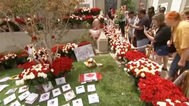 迈克尔杰克逊去世十周年 200多名歌迷齐聚美国缅怀偶像