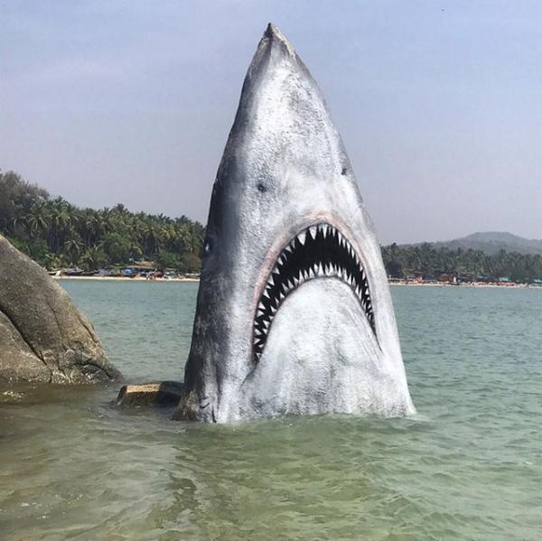 """海边的石头竟然变成了""""大白鲨"""",人们纷纷跑来合影留念"""