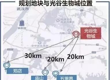 光谷南大健康产业园总体规划公开招标江夏发展的新契机