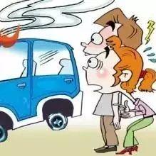 【知书达礼】外出停车要守规丨《最后的闺秀》:才女张充和忆往情深