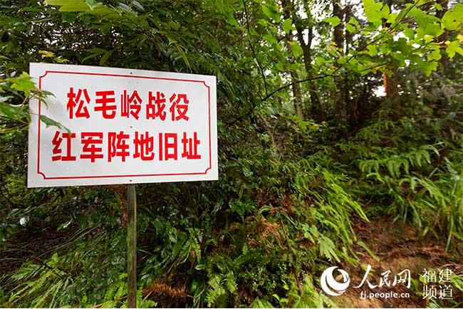 松毛岭保卫战——红军长征前的最后一战