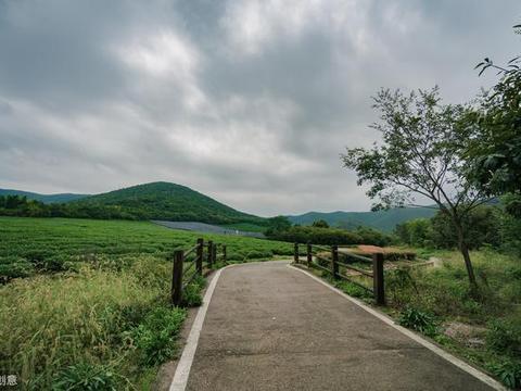 """国内旅游:无锡""""龙池山""""——茶洲叠翠的灵秀胜地"""