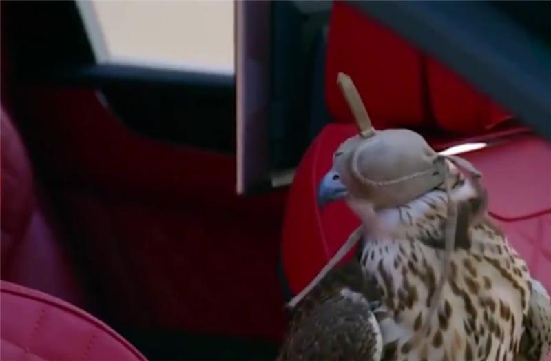 """定制版宾利,车价800万,车内布满""""雄鹰""""标识,车主拿它来冲沙"""