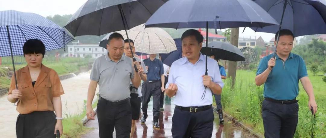 雨不停战不止!李小豹在萍乡湘东区指挥抗洪救灾工作