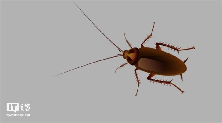 """""""小强""""真要杀不灭了?研究指蟑螂将进化至对化学物质免疫"""