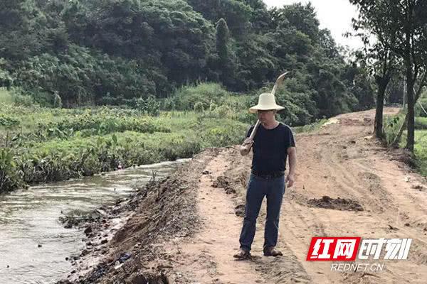 株洲攸县春联街道:筑牢河堤 保住青青稻田
