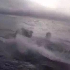 美国海岸警卫队跳上毒贩潜艇,缴获7.7吨毒品