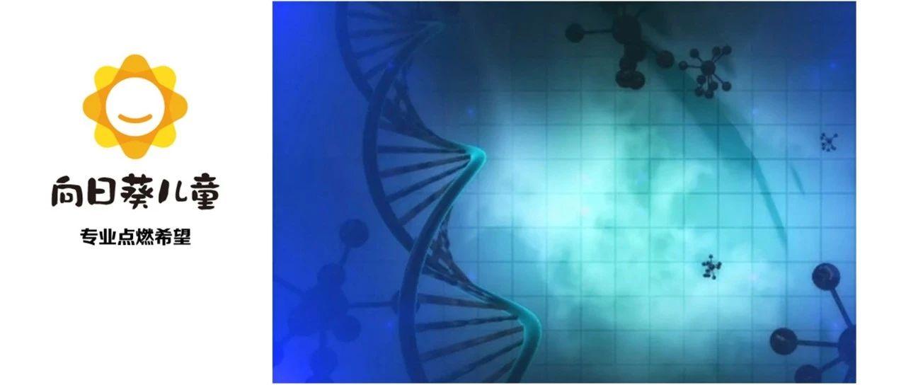 治愈率从0%-90%,近60年征服白血病的新疗法里程碑