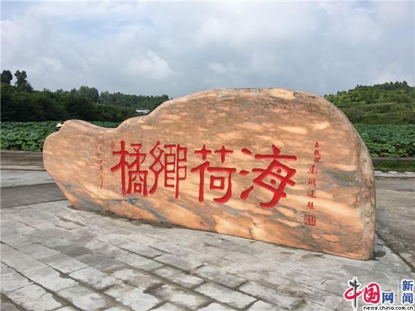 """【看长江之变】重庆忠县:打造田园综合体 """"农文旅""""发展带动乡村振兴"""