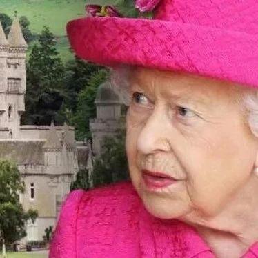 """""""蝠""""到了!英女王城堡喜提蝙蝠""""大礼包"""",赶都赶不走"""