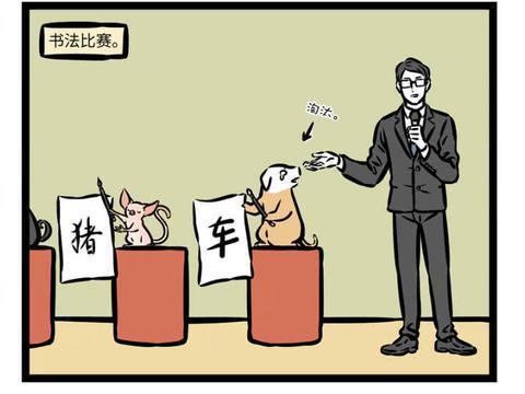 """非人哉:第一届""""猪猪杯""""大赛,徐哼唧惨败,冠军黑幕得如此猖狂"""
