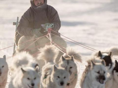 在北极生活着一群黄种人,男的帅气女的漂亮,但有一习俗让人不齿