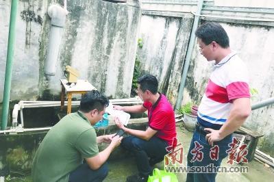黄江茅洲河支流 总磷浓度平均值下降近半