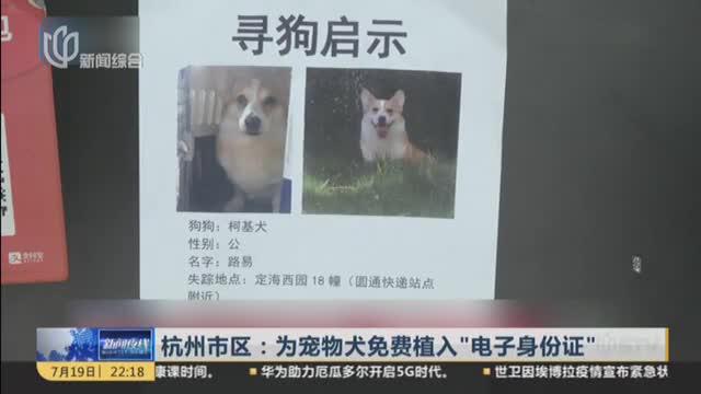 """杭州市区:为宠物犬免费植入""""电子身份证"""""""
