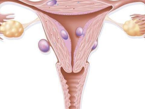 受精卵着床感觉、需要时间、注意事项,正在备孕女性,可别忽视了