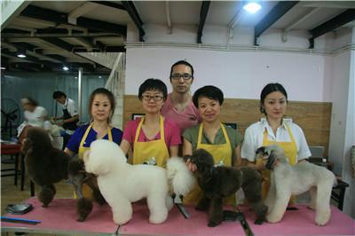 选择什么样的宠物美容培训学校是合格的