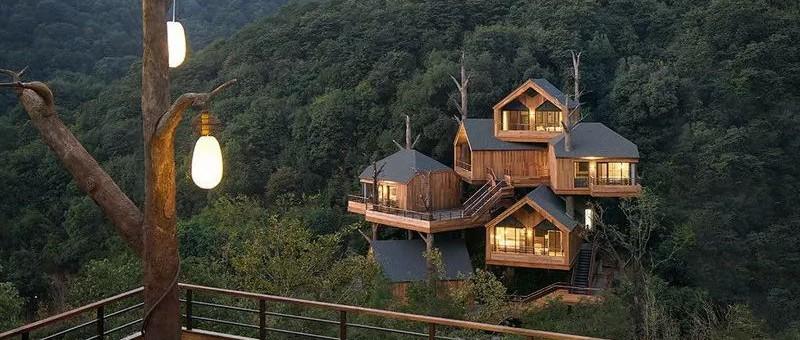 全球最受欢迎树屋酒店|夜晚坠入大自然的梦乡,清晨在森林的枝桠间醒来