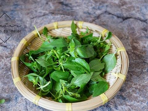 河南人大爱的菜,天热拌黄瓜加一点,提神醒脑,消炎防感染