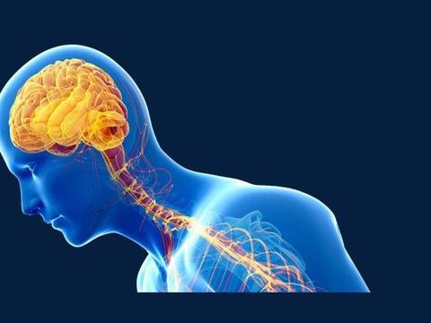 干细胞治疗神经系统疾病