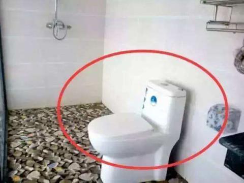 为什么马桶上有2个按钮?听商家说完,网友:白用几十年马桶!