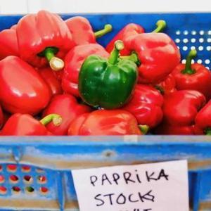 甜椒、青椒身世之谜,解开尖椒与墨西哥辣椒差别在哪?