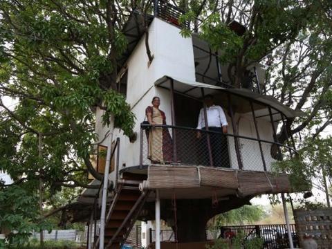 印度男子在芒果树上建造出4层楼高的树屋,游客们排队来参观