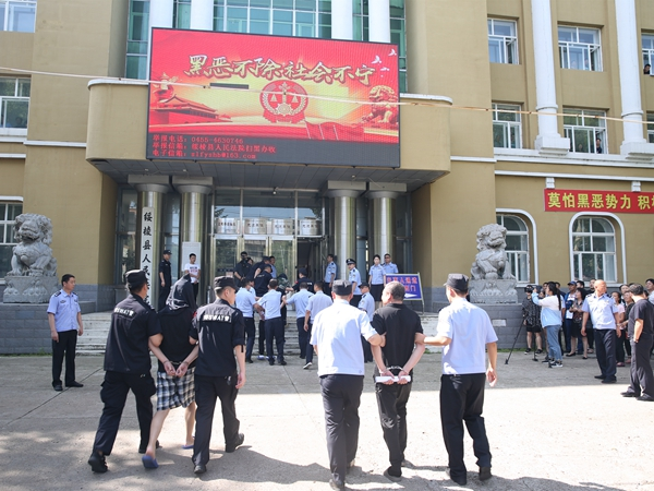 黑龙江绥棱县人民法院公开审理一起恶势力集团犯罪案件