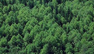四川启动重点区域自然资源确权登记 将用5年完成