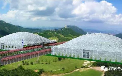 鸟巢型生态福利院设计