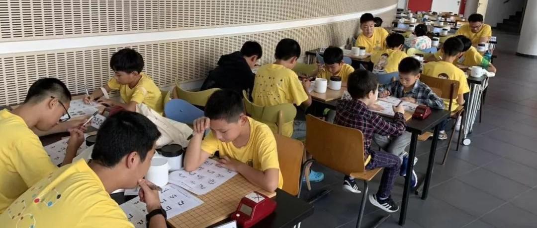 欧洲游学丨围棋大会聂道成绩优异 樊麾答疑《AlphaGo》