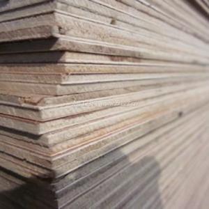 三合板是什么,三合板价格和规格