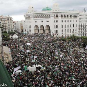 驻阿尔及利亚大使馆:不要围观或参与游行活动