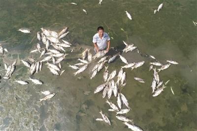 淮河流域60年一遇干旱:洪泽湖水面缩小近一半|水利厅|南水北调