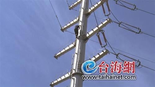 漳州一男子爬30米電線高壓塔輕生 消防苦勸22小時