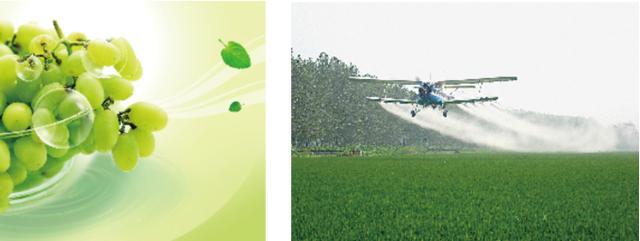 弗鲁克fluko农药水悬浮剂分散应用案例