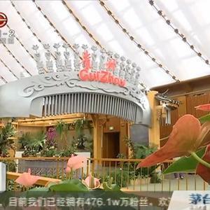 世园会中国馆里寻贵州,贵州省的大生态 大健康展现给世界人民