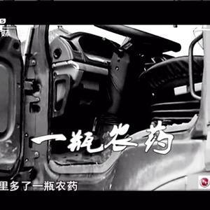 货车女司机被查超载被逼服毒自杀,相关人员下马后却害怕遭到报复