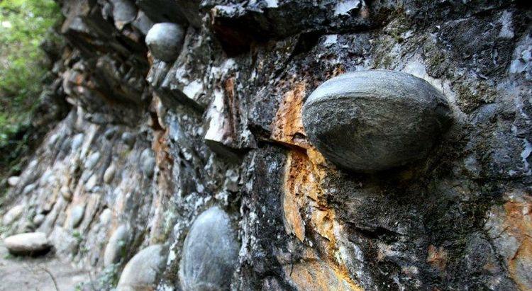 这里的石头能生蛋:每三十年就会产一枚,被人当做宝贝