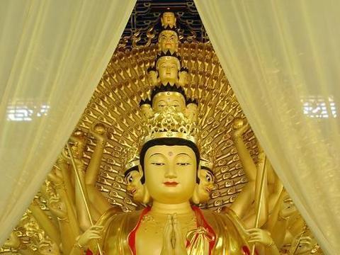 真正见道的菩萨会发生哪些本质上的变化?