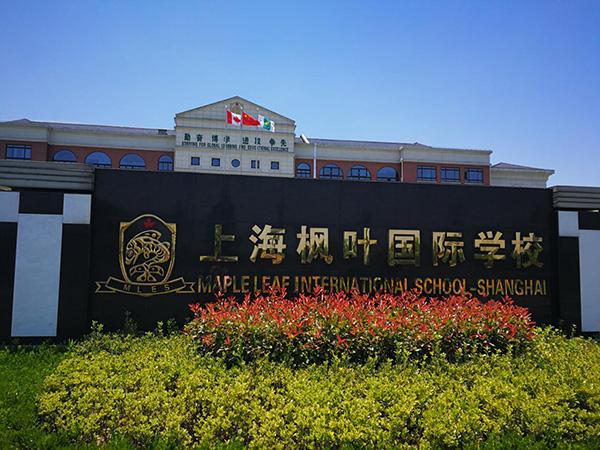 名校长访谈|上海枫叶国际学校:教育像种地,要耐心长期耕作