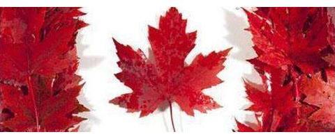 麦吉尔高分控!细数加拿大难度堪比高考的大学